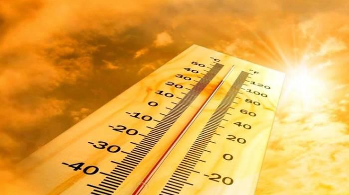 29 травня на Київщині буде сухо та сонячно - прогноз погоди, погода - 2905 pogoda3
