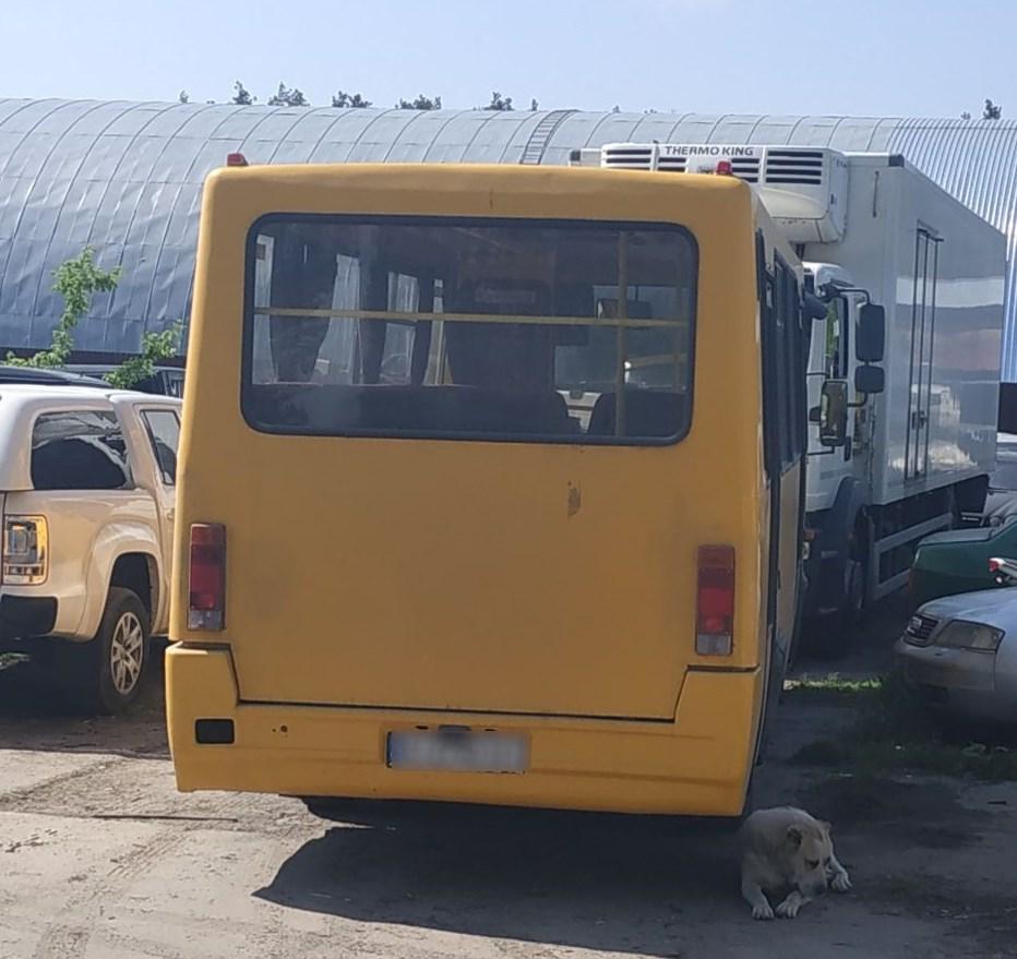 Без посвідчення й документів перевозив людей водій маршрутки у Василькові