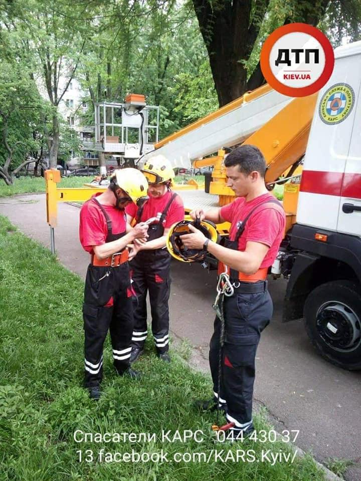 У Києві агресивні ворони нападали на дітей -  - 60349953 1325143704318186 8320161253687296000 n
