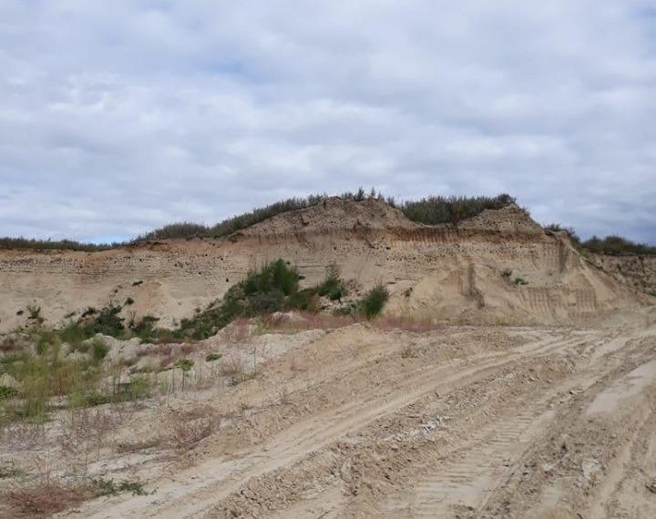 На Бориспільщині вкрали піску на 71 млн грн -  - 60874821 2242730385944068 3508392757846605824 n
