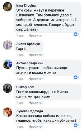 Київ - зелене місто. Доведено козами.. -  - 61548787 350613205639699 7792960443374370816 n