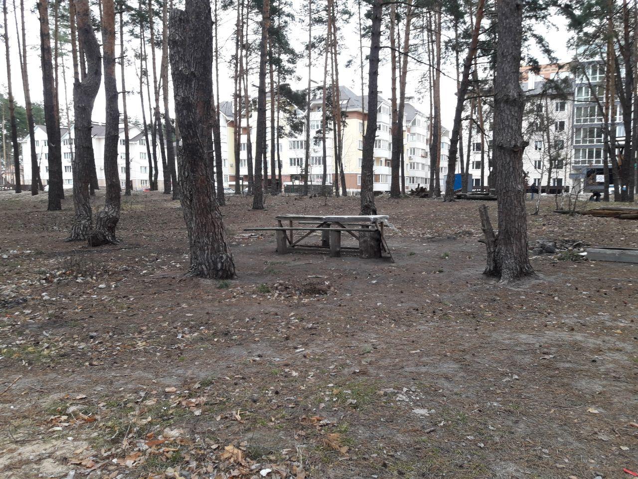 Нова гаряча точка: мешканці перенаселеного району Ірпеня проти забудови скверу по вул. Лісовій -  - IMG 20190525 194620 238