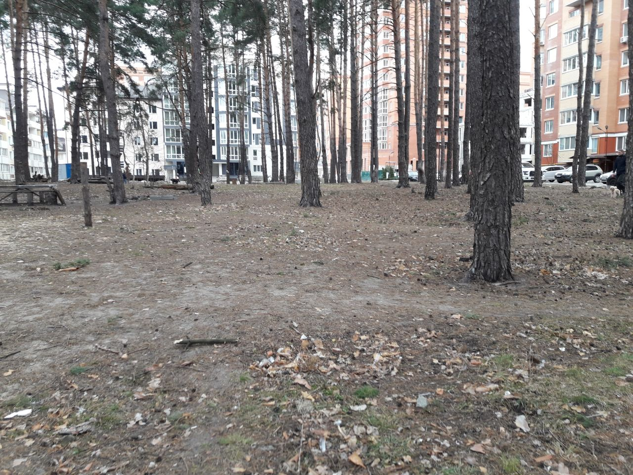 Нова гаряча точка: мешканці перенаселеного району Ірпеня проти забудови скверу по вул. Лісовій -  - IMG 20190525 194700 353
