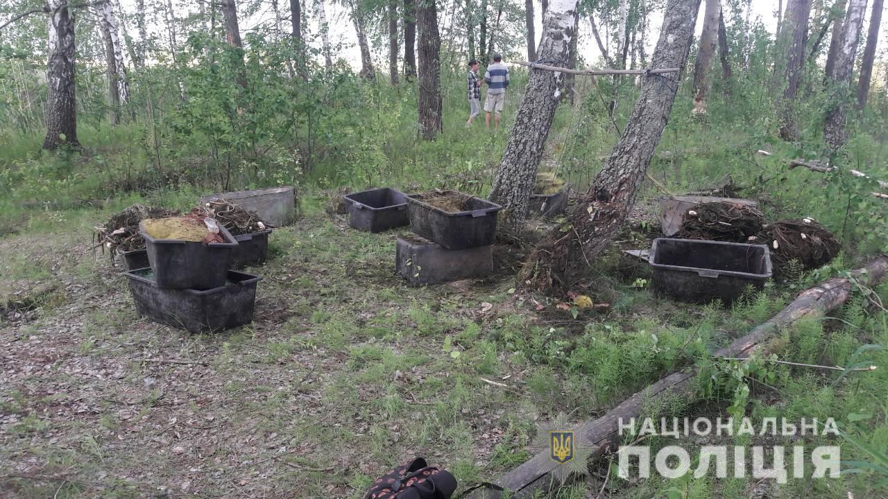 """Триває операція """"Нерест"""": на Іванківщині вилучено 32 сітки для незаконного вилову риби -  - WhatsApp Image 2019 05 23 at 8.57.00 AM"""
