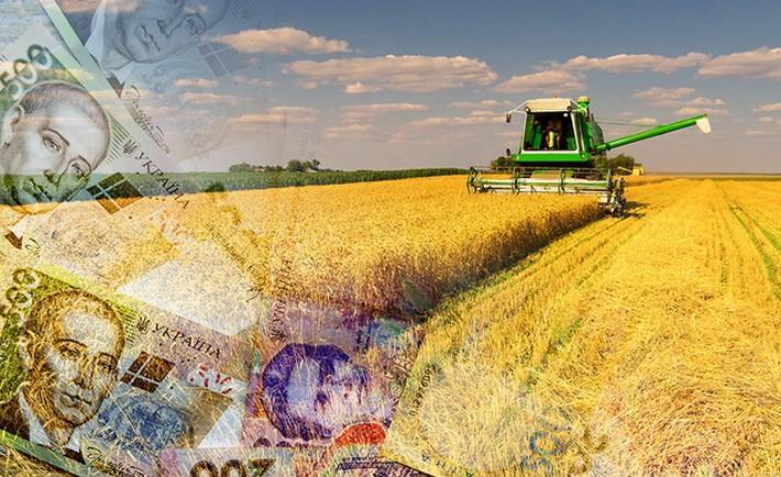 Аграрії зміцнюють гривню: голова ради НБУ - продукти харчування, НБУ, курс гривні, інфляція, вартість за, агросектор - var 11949