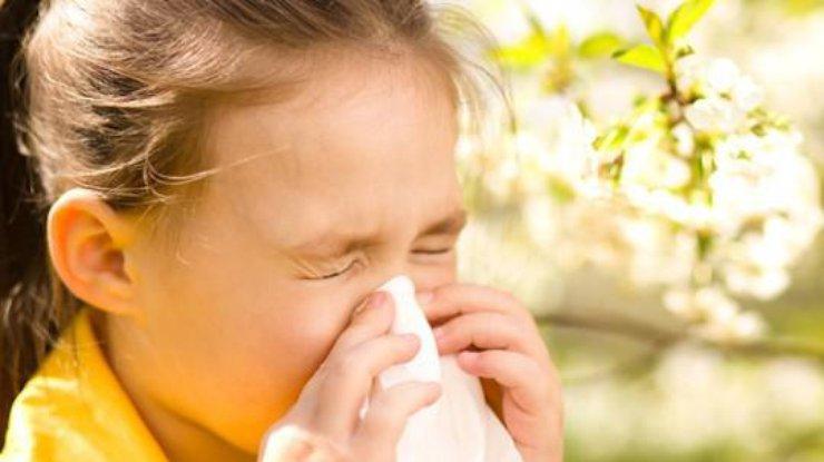 15_topolynyj-puh Алергії на тополиний пух не буває, – Супрун спростувала черговий міф