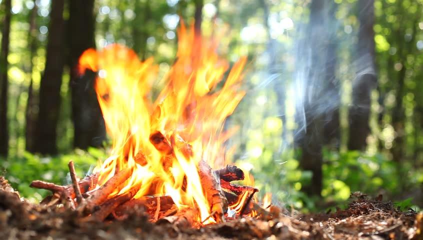 22_nebezpeka На Київщині оголошено найвищий рівень пожежної небезпеки