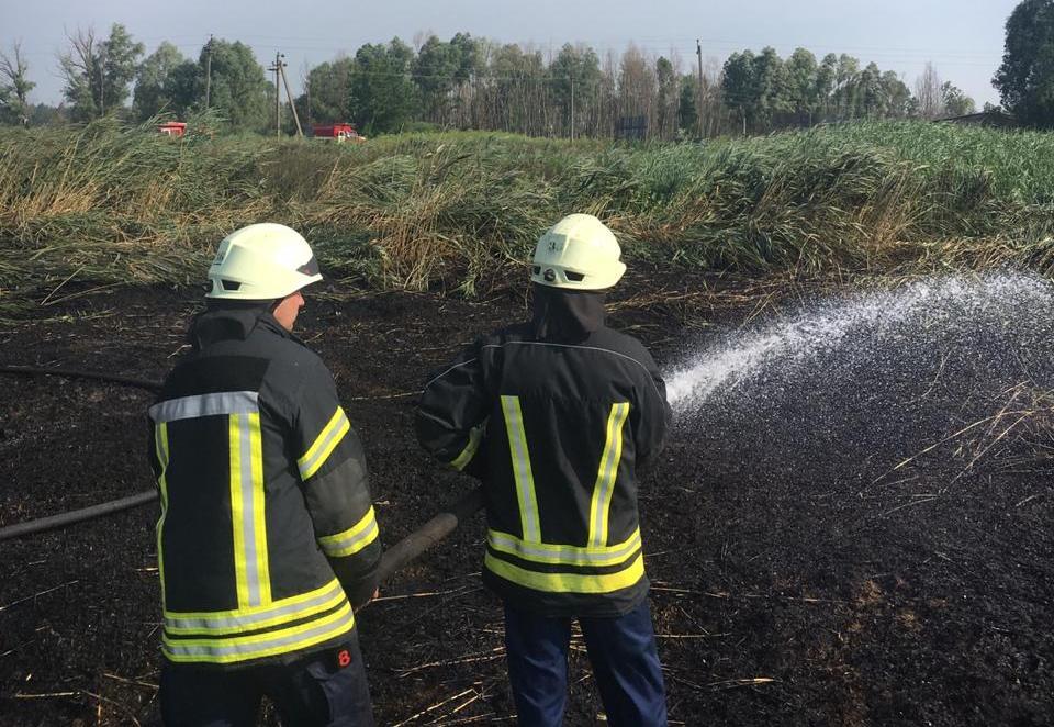 В Ірпені пожежники другу добу гасять палаючий торф, ймовірна причина пожежі – підпал -  - 3 1 1