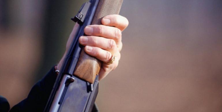 У Музичах зникли лелеки через дитину зі зброєю - Червона Книга, стрілянина, Музичі, лелеки - DB41EBE9 C029 4152 B7A5 716EC1DD2D9B big