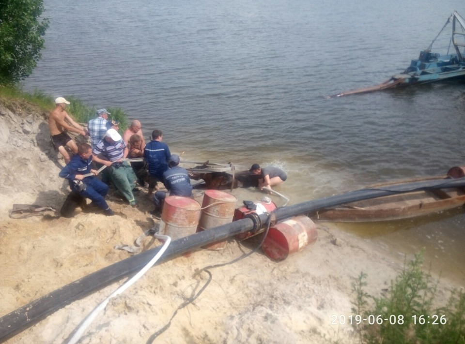 Kin Рятувальники витягли коня: у Бучі тварина застрягла в піску на озері