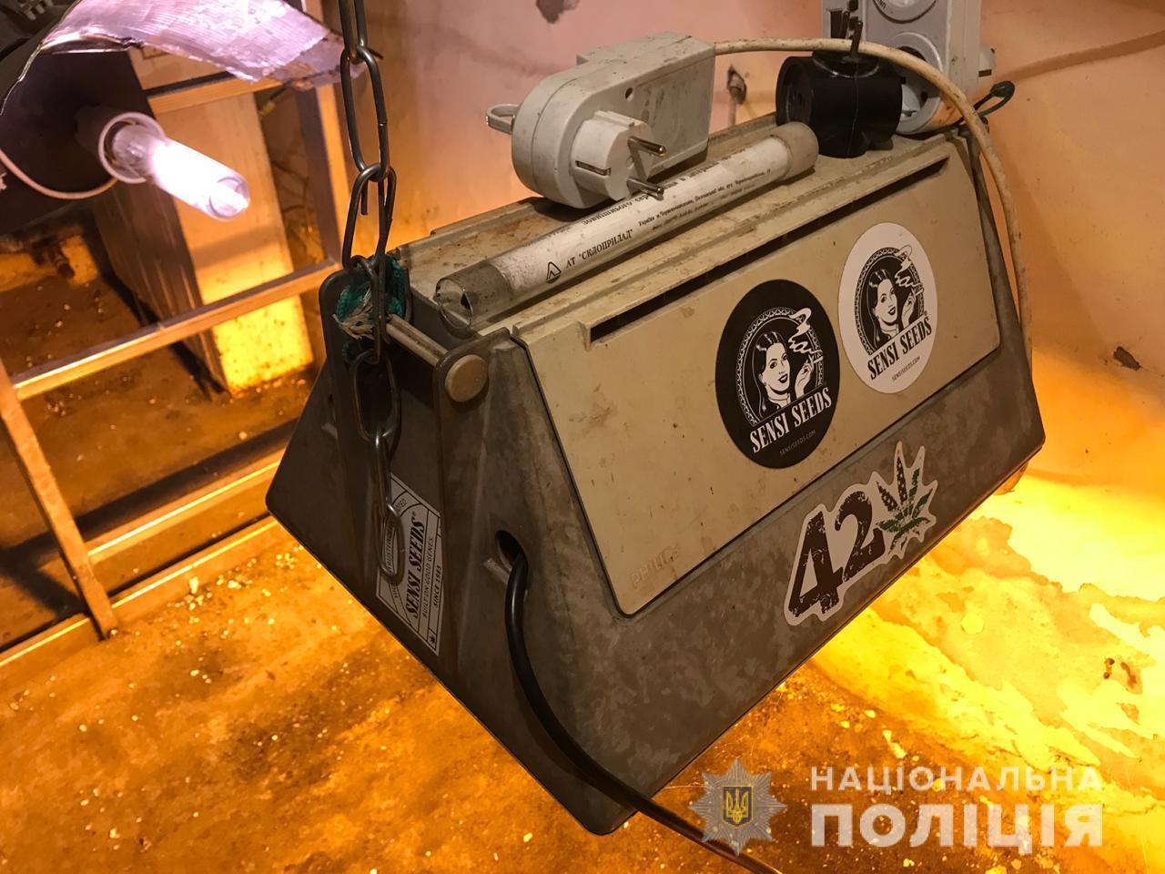 Teplyz-Buch-1 Уродженець Донецька, який тимчасово живе у Бучі, в теплиці виростив 30 кущів конопель