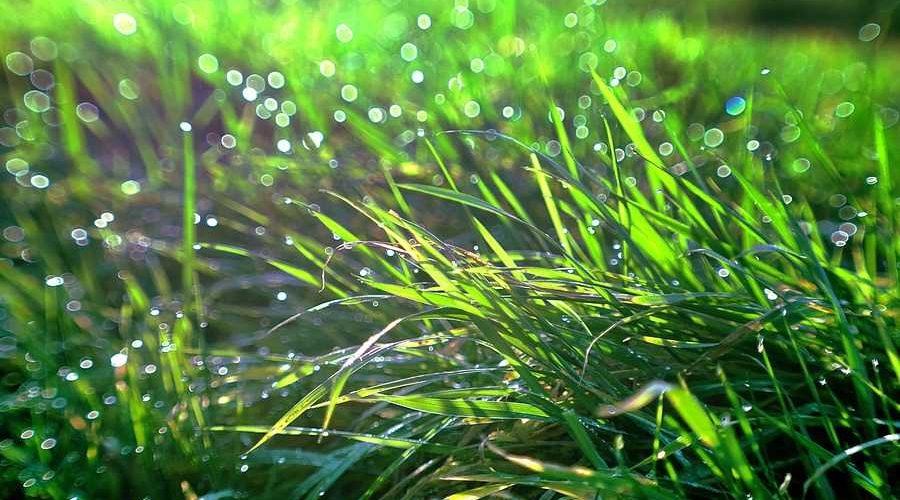 15_pogoda3 Новий тиждень на Київщині розпочнеться помірним теплом та грозовими локальними зливами