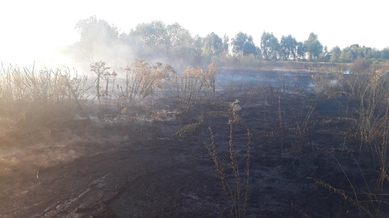 В п'яти районах Київщини палають торф'яники -  - 0 02 0a 5ce6ee085a5c032d3288ff8ed877a7f9c2bb8ce029883cd278a4ee6d35bf55a1 33e2d523