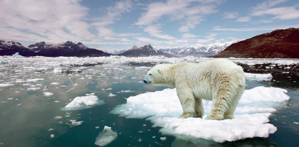 250 000 додаткових смертей щороку:  хто у зоні ризику через зміни клімату? - клімат, зміна клімату, глобальні зміни клімату, глобальне потепління - 06 zmina klimatu4