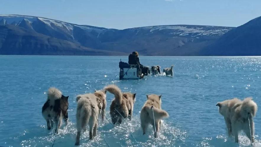 Тане на очах: у Гренландії зафіксували катастрофічне за всю історію танення льоду - клімат, Гренландія - 07 grenlandyya