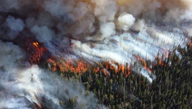 Лісова пожежа у Росії: на відновлення тайги підуть століття - смог, Росія, лісова пожежа, екологічна катастрофа - 0804 Rosiya pozhezhi