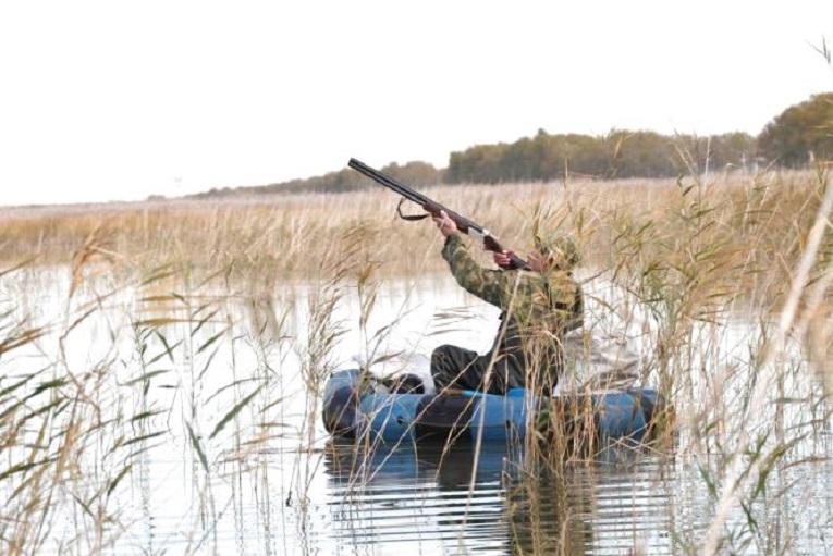 0812_pernati_myslyv_zb Початок сезону полювання на пернатих: дозволено, але не скрізь