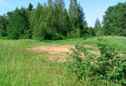 На Обухівщині прокуратура намагатиметься через суд повернути незаконно вилучені ліси -  - 200 nuenknxavscesdrn