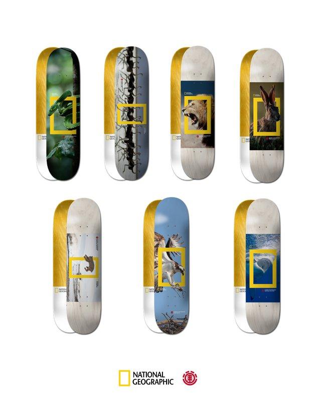 З думкою про тварин: National Geographic випустить колекцію скейтбордів, присвячену дикій природі - National Geographic - 20 kollektsyya3 1