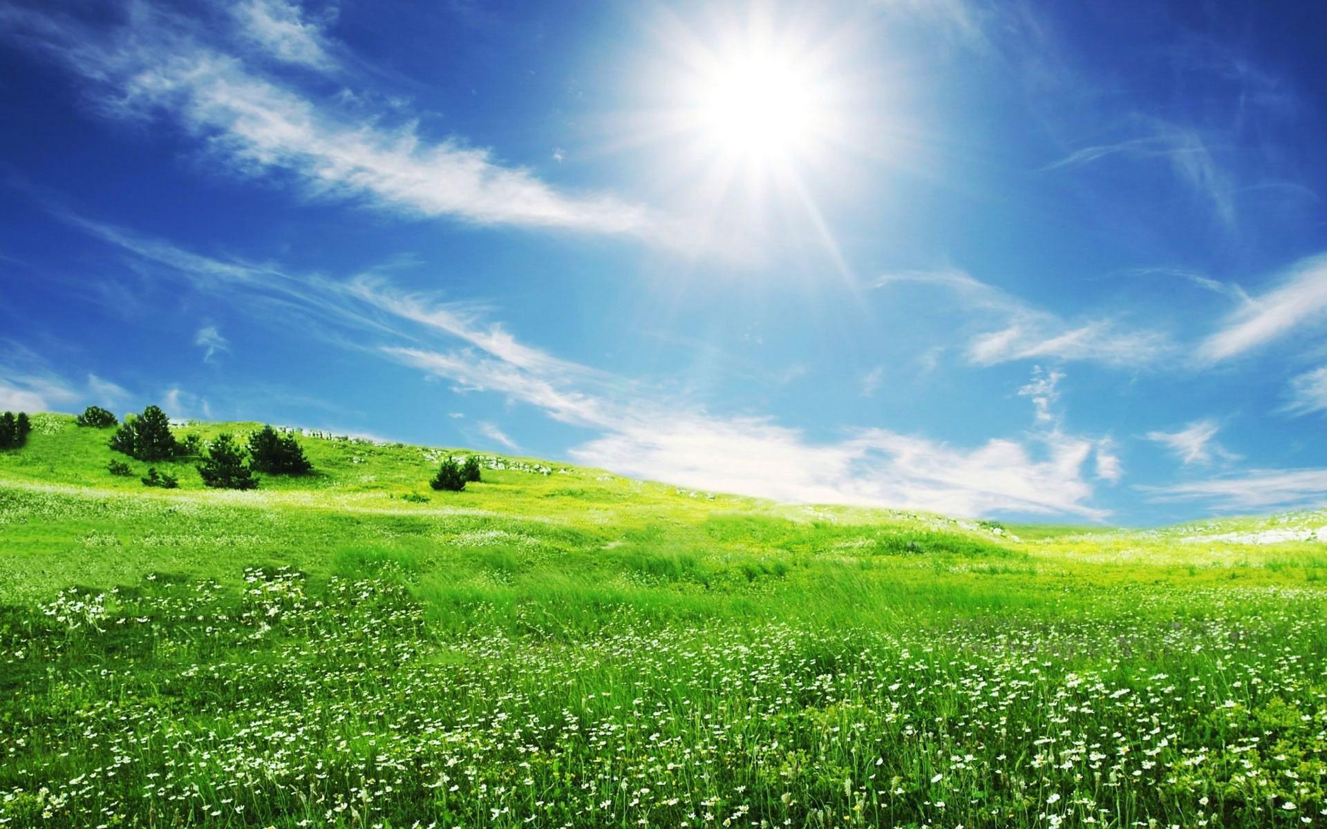 Останні дні літа будуть спекотними: 30 серпня на Київщині багато сонця та сухо - погода - 30 pogoda2