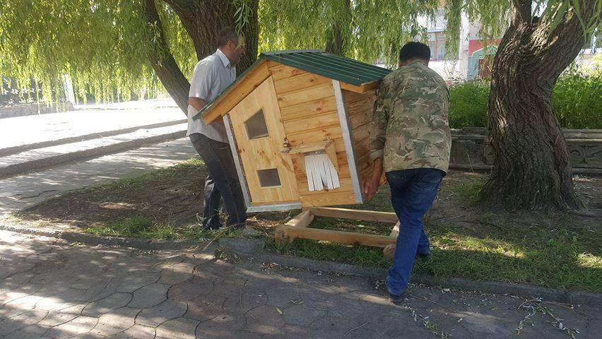 У Славутичі з'явився будиночок для безпритульних котів -  - 67772572 2355154294567470 7766397445038145536 n