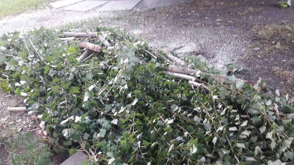68618864_2387316384859337_5635125842586632192_n У Броварах ліквідували наслідки буревію