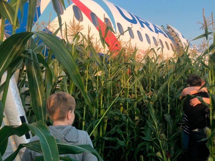 Через птахів у двигуні літак здійснив аварійну посадку в кукурудзяному полі -  - 68737606 2383173621758724 7324092667694940160 n