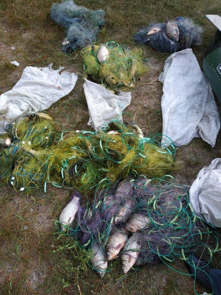 На Переяславщині чоловіки наловили рибу сітками на 3 тис 128 гривень -  - 69764378 1197932970398329 1737451572746518528 n