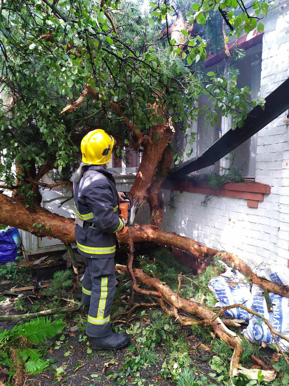 Der-dah-1 Дерево «приземлилося» на дах: у Бучі рятувальники ліквідовували наслідки буревію