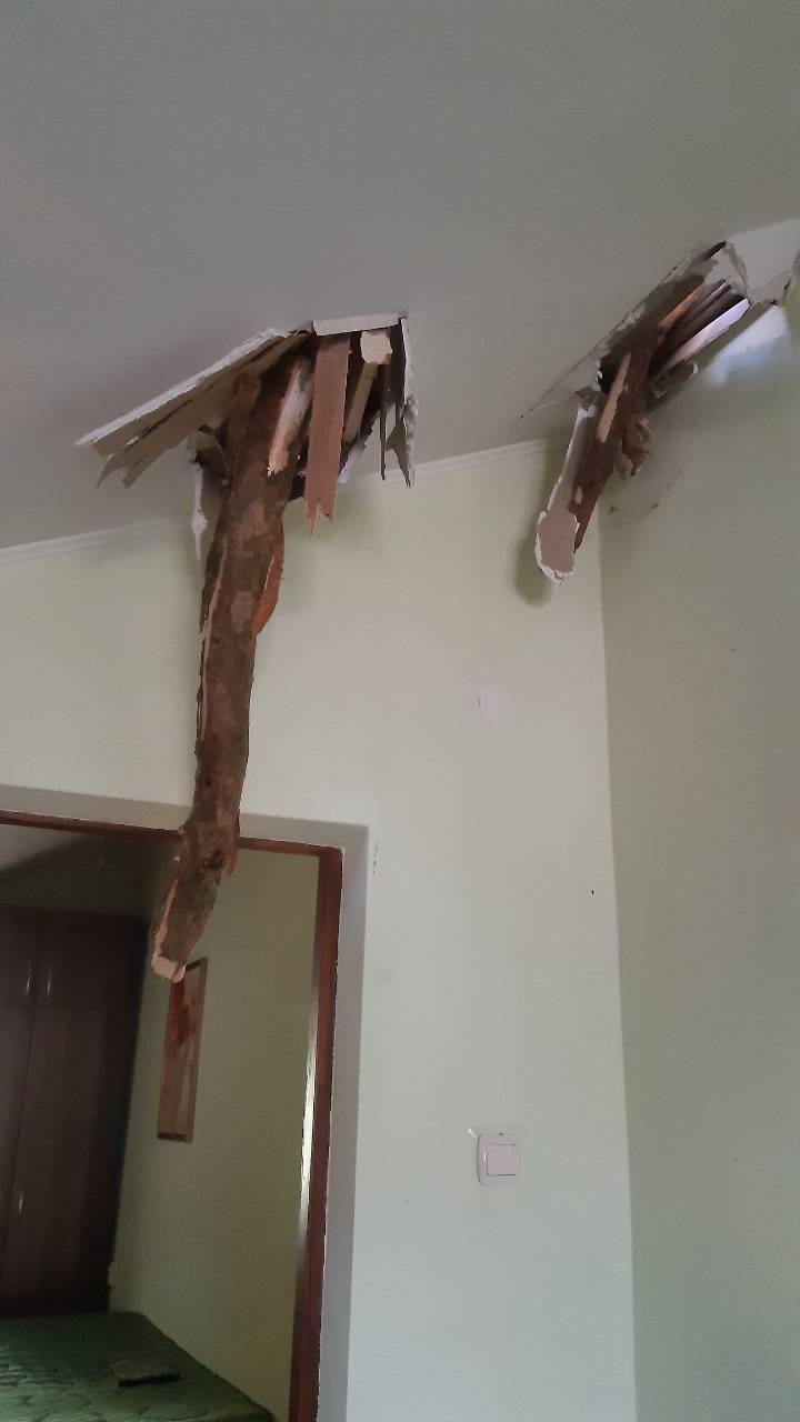 Der-dah-2 Дерево «приземлилося» на дах: у Бучі рятувальники ліквідовували наслідки буревію