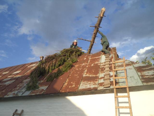 Der-dah Дерево «приземлилося» на дах: у Бучі рятувальники ліквідовували наслідки буревію