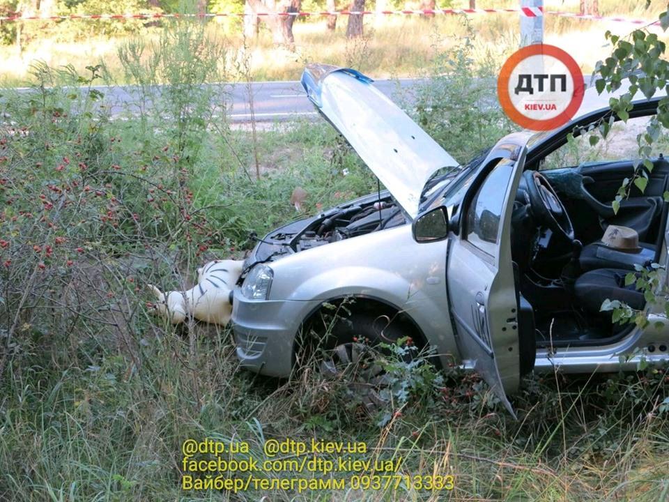 Смерть на Гостомельському шосе: у таксі загинула жінка, водій та пасажир – госпіталізовані - смертельна аварія, Приірпіння, київщина, ДТП, Гостомельське шосе, Гостомель - Gost shose Uklon 5