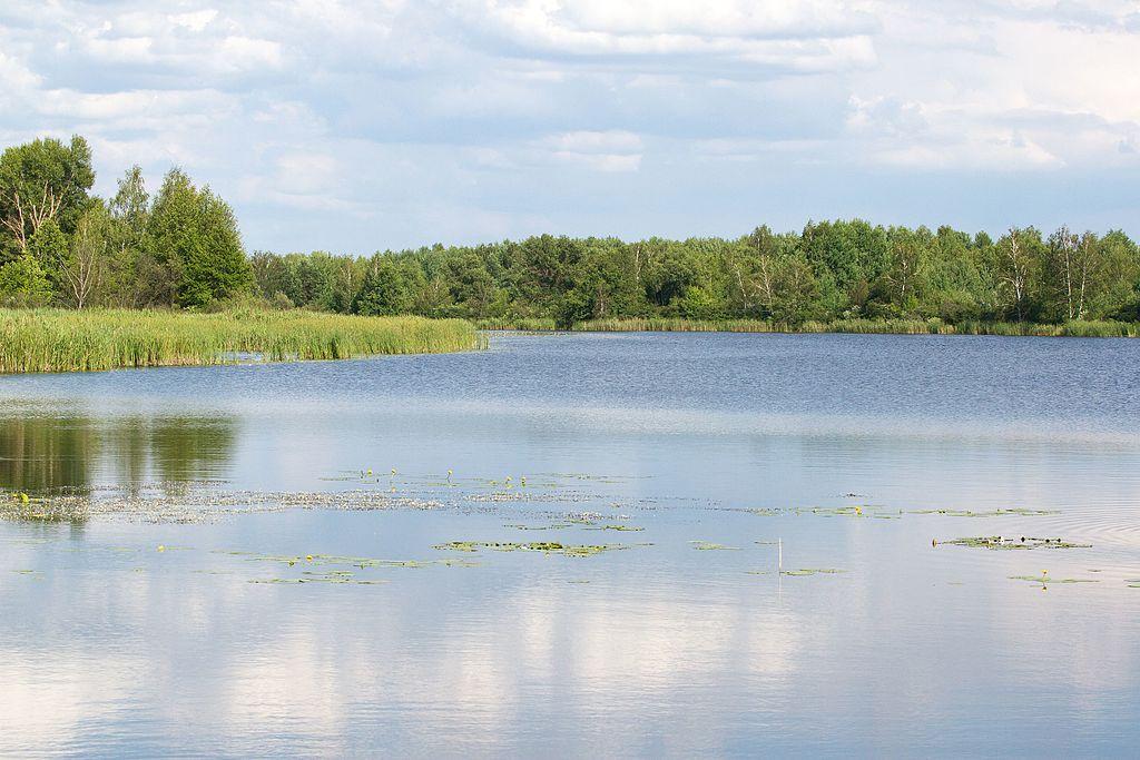 Незаконно віддані Обухівською РДА землі водного фонду повернулись державі