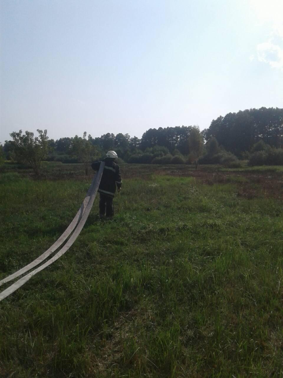 Stoyanka-1 Дві пожежі – за добу: в Стоянці гасили суху траву, в Ірпені – сміття