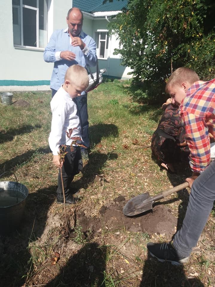0903_ZHukynske_lisnytstvo5 На Вишгородщині першокласники у день знань садили дерева