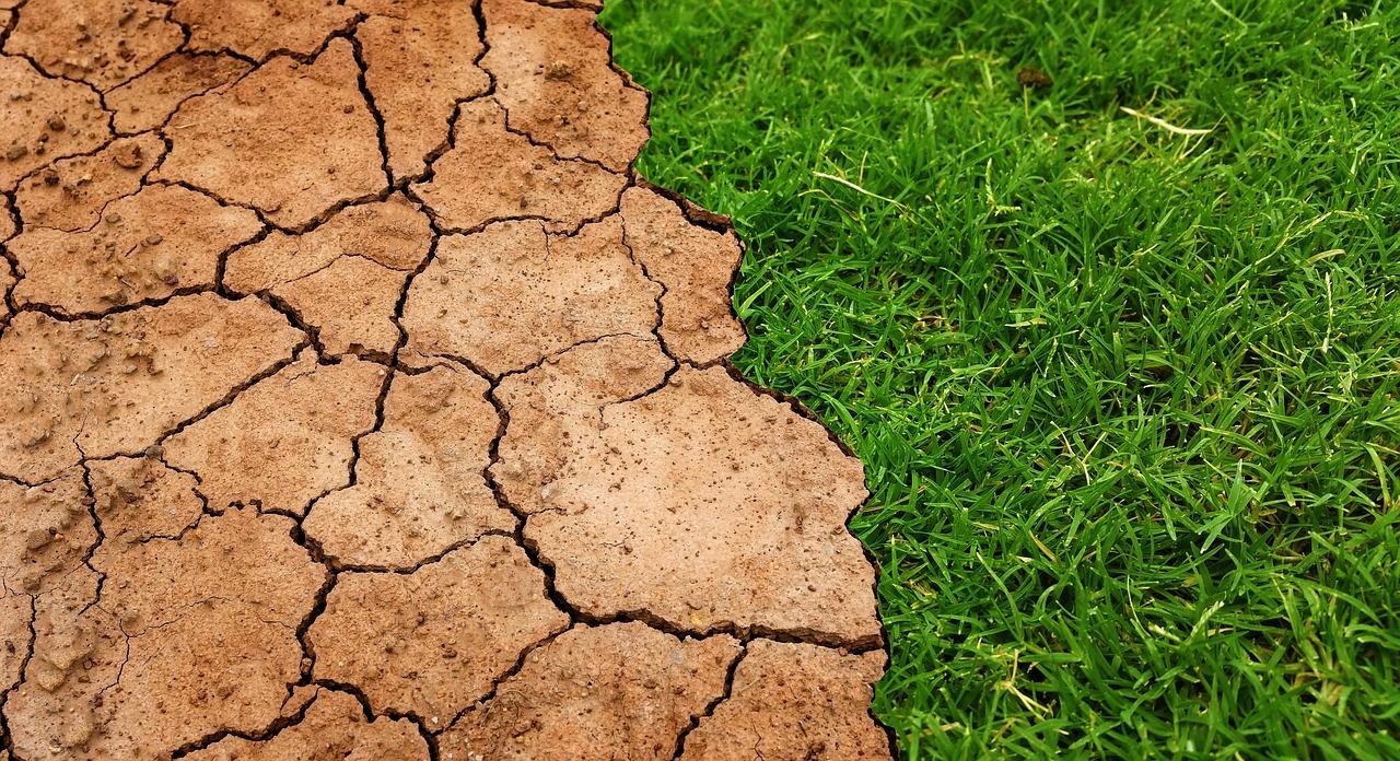 Людство «спалює» власне майбутнє: наслідки зміни клімату будуть катастрофічними, – ООН - зміна клімату, глобальні зміни клімату, глобальне потепління - 12 zmyna klymatu