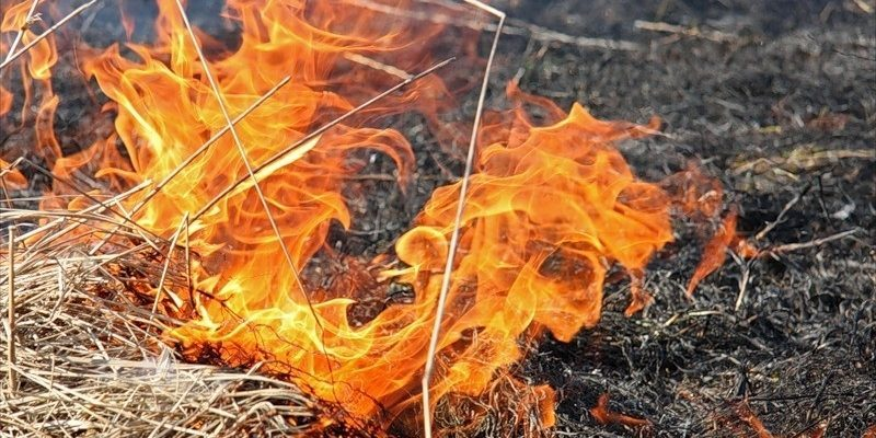 14_pozhezhna-nebepeka Не дивлячись на погоду, на Київщині утримується надзвичайна пожежна небезпека