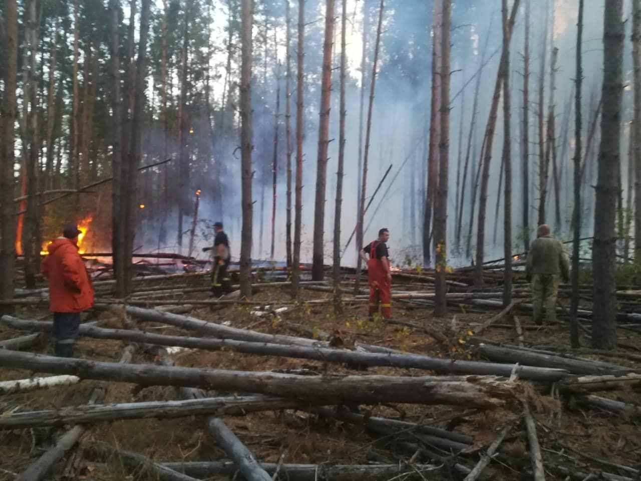 У гасінні лісу в Чорнобильській зоні задіяна авіація -  - 70257945 665762370596470 3036877173483896832 n