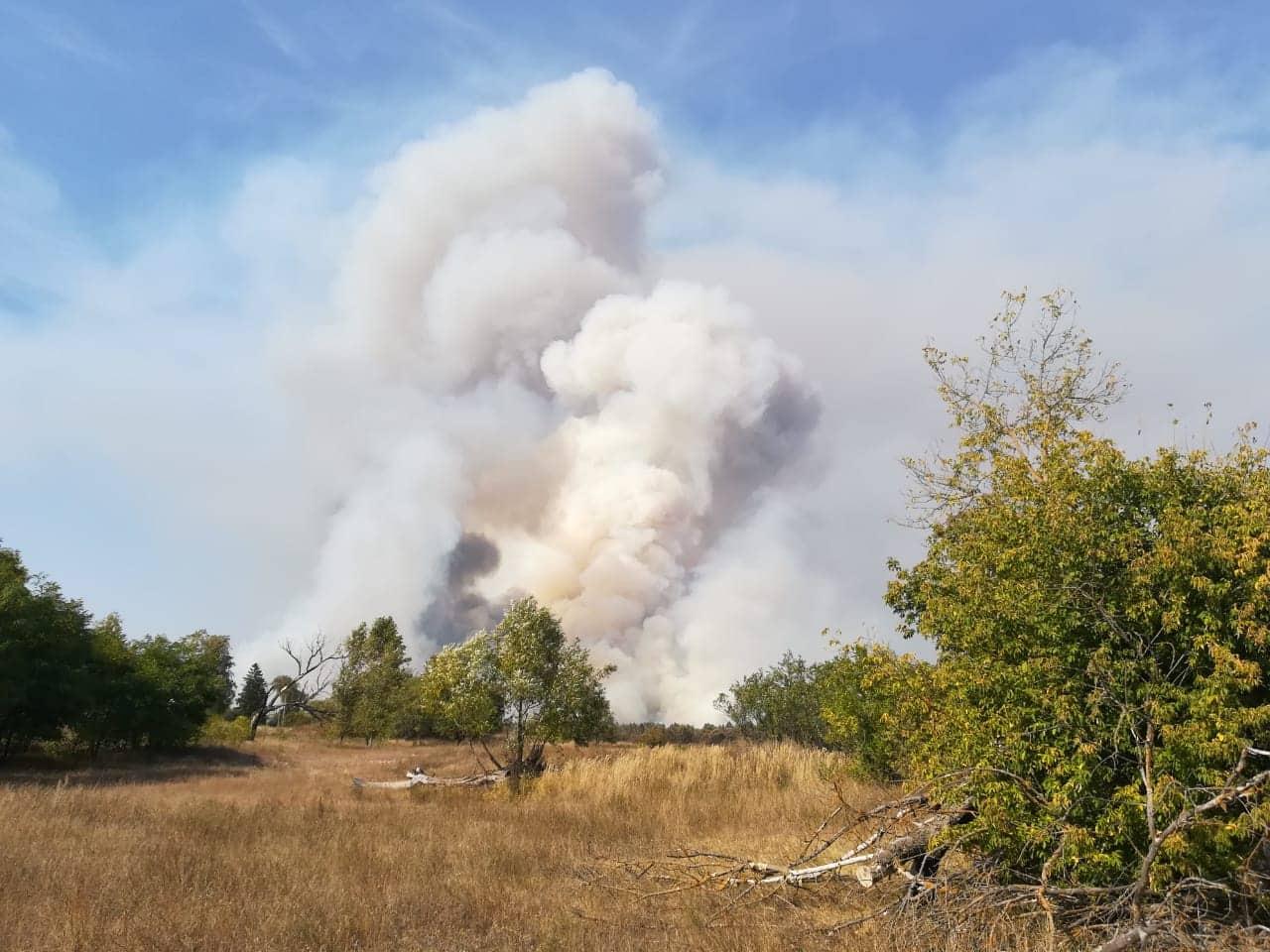 У гасінні лісу в Чорнобильській зоні задіяна авіація -  - 70265491 2341185539478402 562618978946514944 n