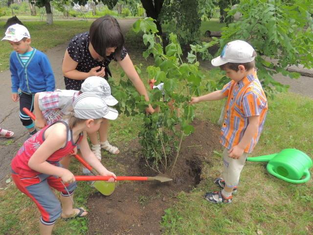 izobrazhenie_1646 «Дерева замість квітів»: як долучитись до акції