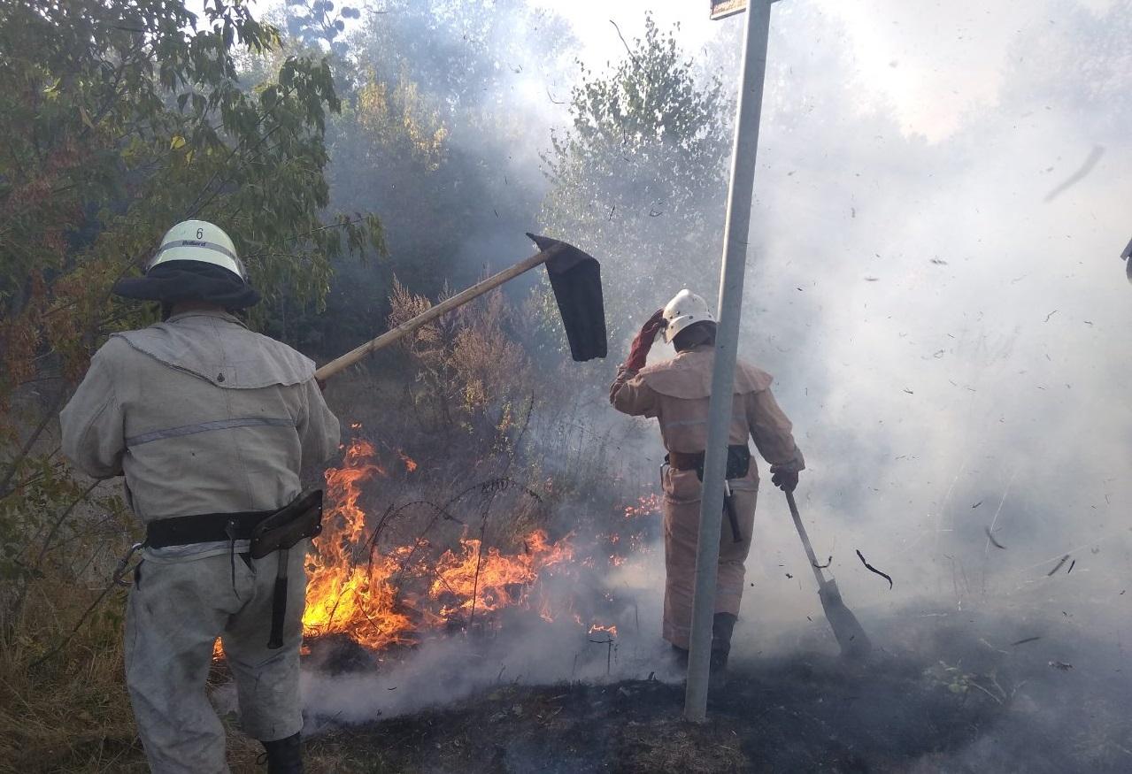Смерть від випалювання трави: на Іванківщині загинула жінка