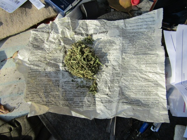 Наркотики у Вишгородській лісосмузі - Поліція, наркотики, київщина, Вишгород - 1021 Kanabis lisosm2