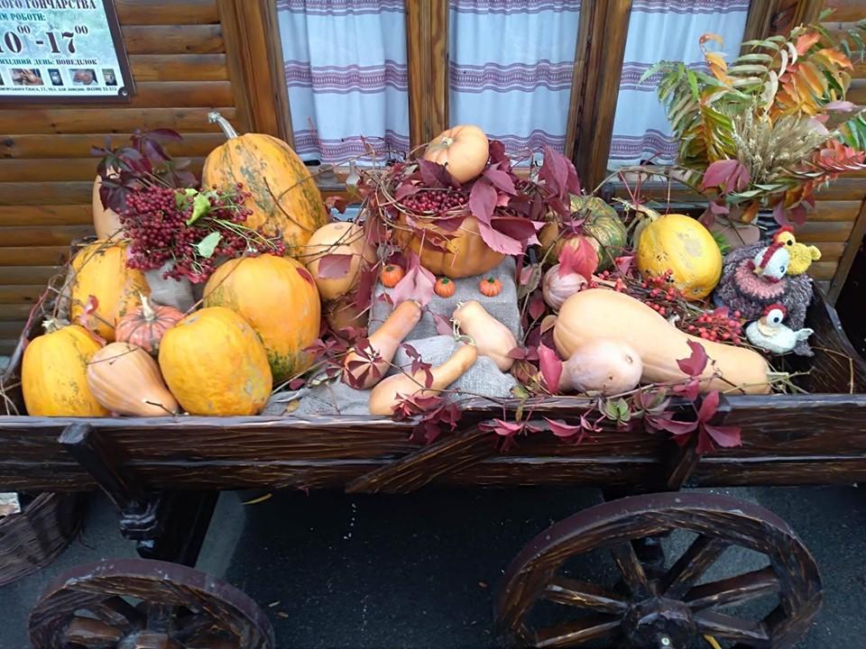 «Яскрава осінь» у Вишгороді – зі смаком гарбузів - музей, київщина, канікули, ВІКЗ, Вишгород - 1031 VIKZ Garbuz1