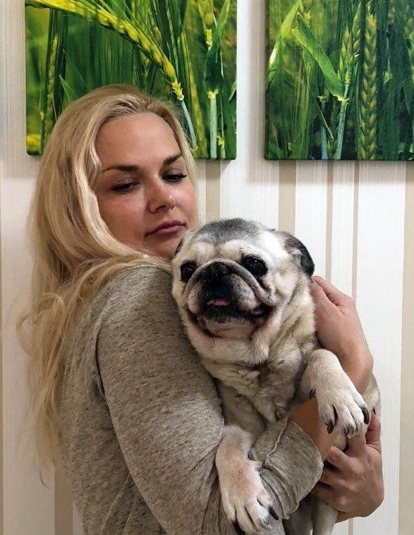 Померла найстаріша собака в Україні -  - 1216323 9783912