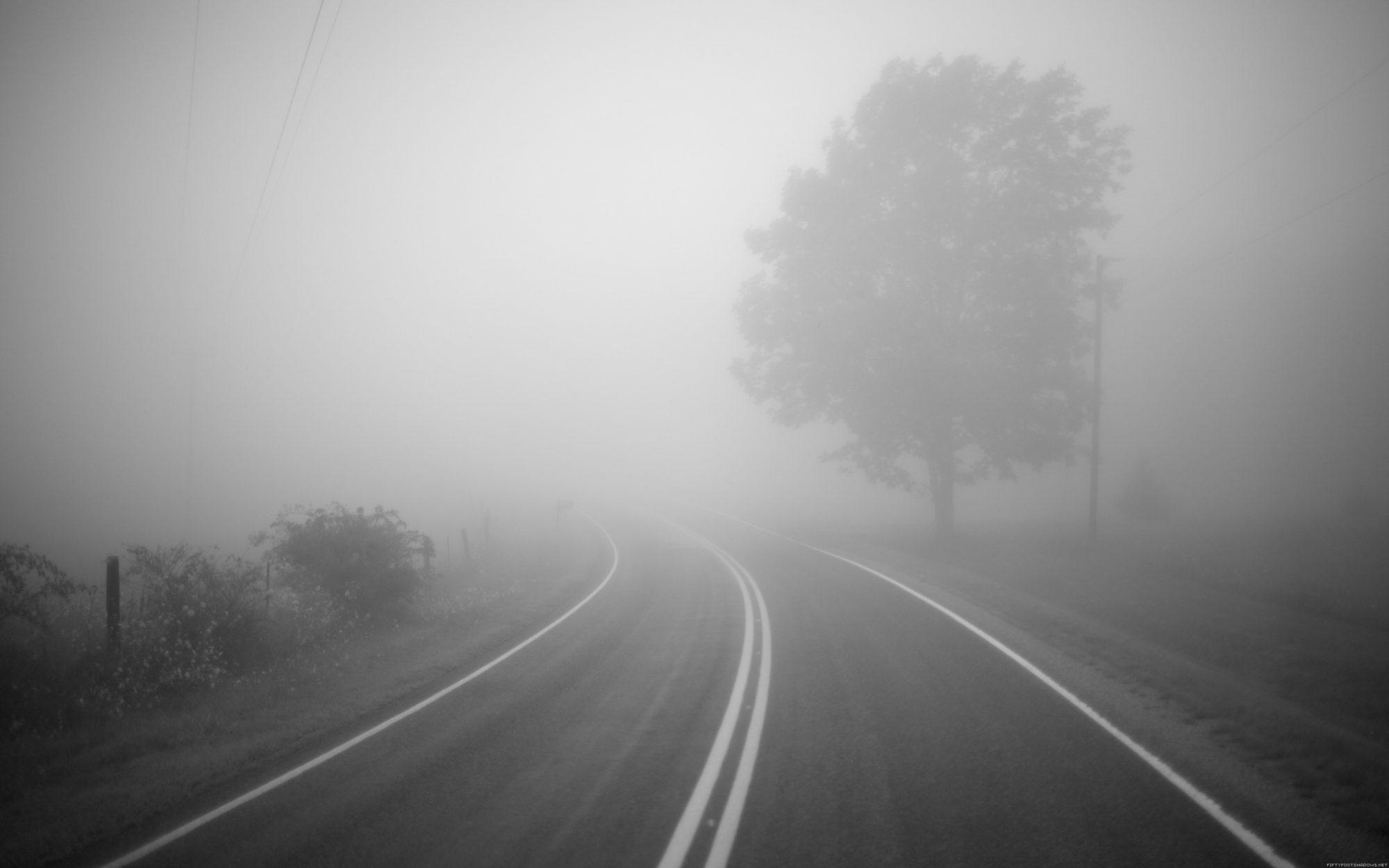 16 жовтня Київщину накриє густий туман: водіїв попередили про погану видимість - погода - 16 tuman 2000x1250