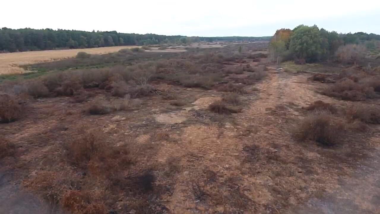 19 На Переяславщині пожежники гасили торф'яники 12 днів