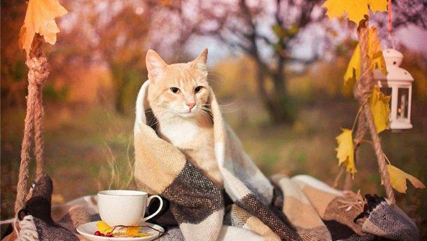 22_poholodannya 28 жовтня на Київщині суттєво похолодає: кінець жовтня «вріже» нічними морозами