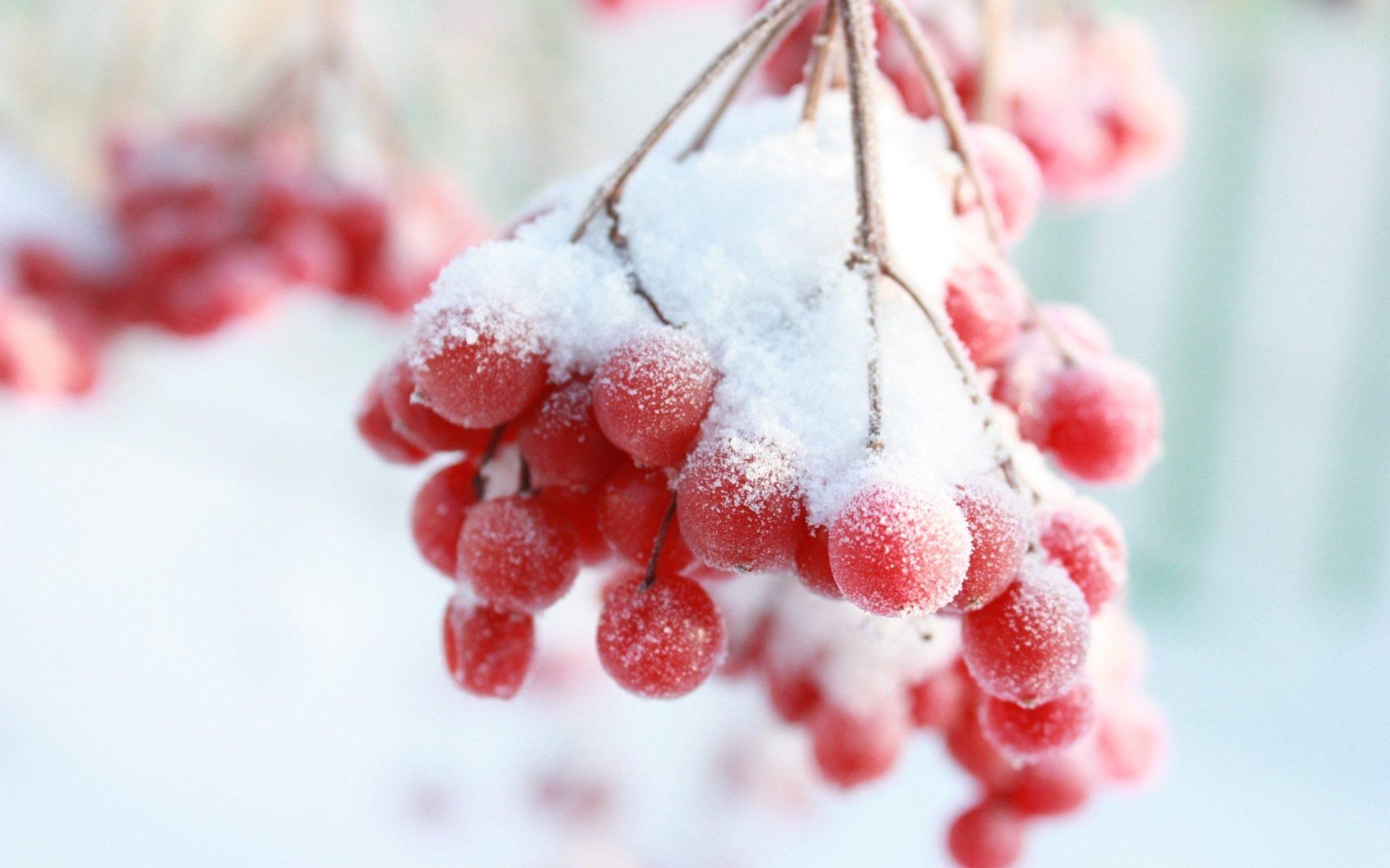 Снігопади і морози: синоптики розповіли, якою в Україні буде погода в листопаді -  - 24 lystopad 2000x1250