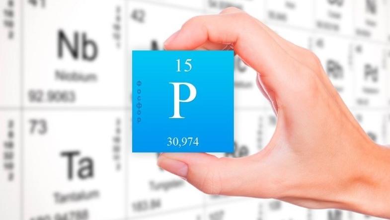 На Землі закінчується життєво важливий ресурс – фосфор -  - 27 fosfor