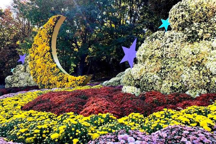 «Квіткове сузір'я»: у Києві відкрили осінній фестиваль хризантем -  - 30 main